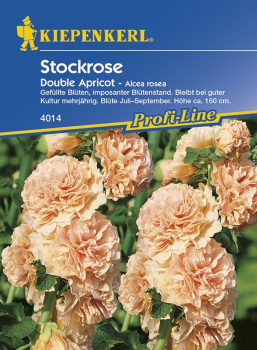 Stockrose Double Apricot