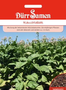 Rauchtabak Nicotiana tabacum